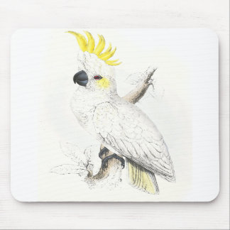 Lesser Sulphur-Crested Cockatoo by Edward Lear Mouse Pad