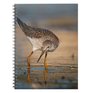 Lesser Yellowlegs Spiral Notebooks