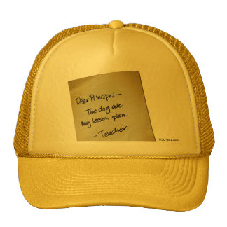 Lesson Plan Trucker Hat