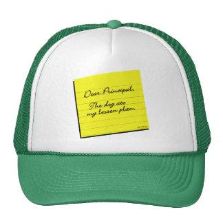 Lesson Plan Trucker Hat