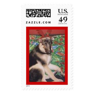Lestat Stamps