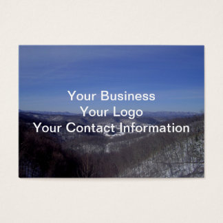 Lester From Above Business Card