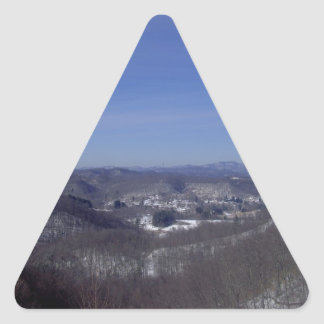 Lester From Above Triangle Sticker