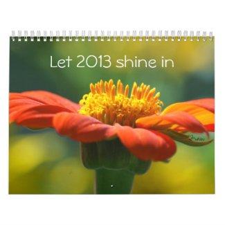 let 2013 shine in calendar
