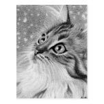 Let es gato del gatito de la nieve tarjeta postal