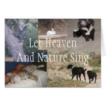 Let Heaven And Nature Sing Christmas Card