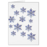 Let is SNOW!!!!!!!!!!!!!!! Greeting Cards