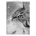 Let is snow  Kitty Cat Greeting Card