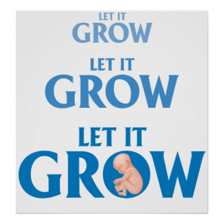 LET IT GROW EMBRYO PREGNANCY POSTER