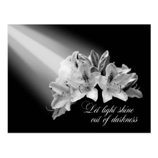 Let Light Shine Out Of Darkness Black And White Postcards