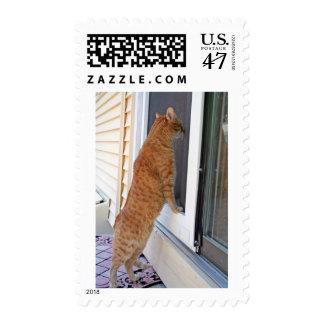 Let Me In! Postage Stamp