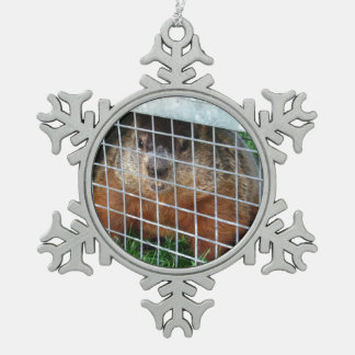Let me out ~ Pewter ornament