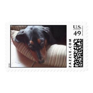 Let Me Sleep Postage Stamps