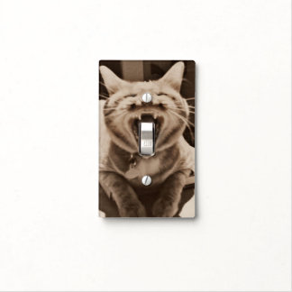 Let my cat's tongue control your lights switch plate covers