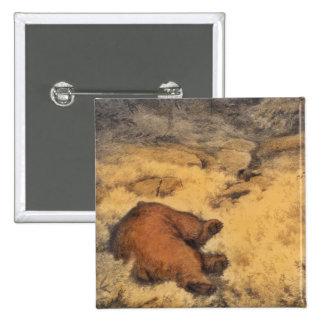 """Let Sleeping Bears Lie"" Pinback Button"