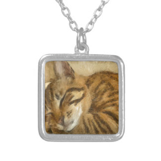 Let Sleeping Cats Lie Silver Plated Necklace