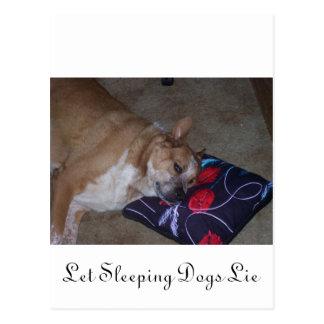 Let Sleeping Dogs Lie Postcard