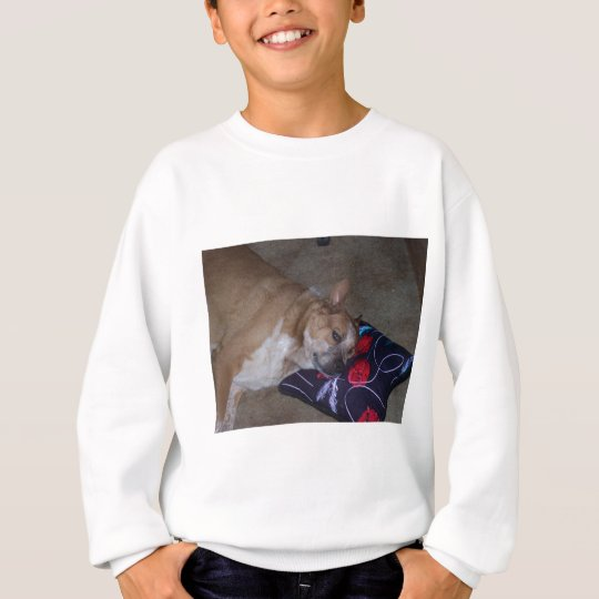 Let Sleeping Dogs Lie Sweatshirt
