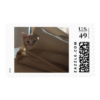 Let the Cat Out of the Bag! Postage