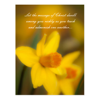 Let the message of Christ dwell among you richly a Postcard