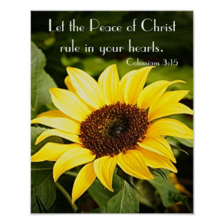 Let the Peace of Christ rule Poster