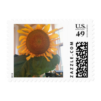 LET THE SUN SHINE IN!  Sunflower stamp! Postage Stamp