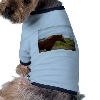 Let The Wind Comb My Hair Doggie T-shirt