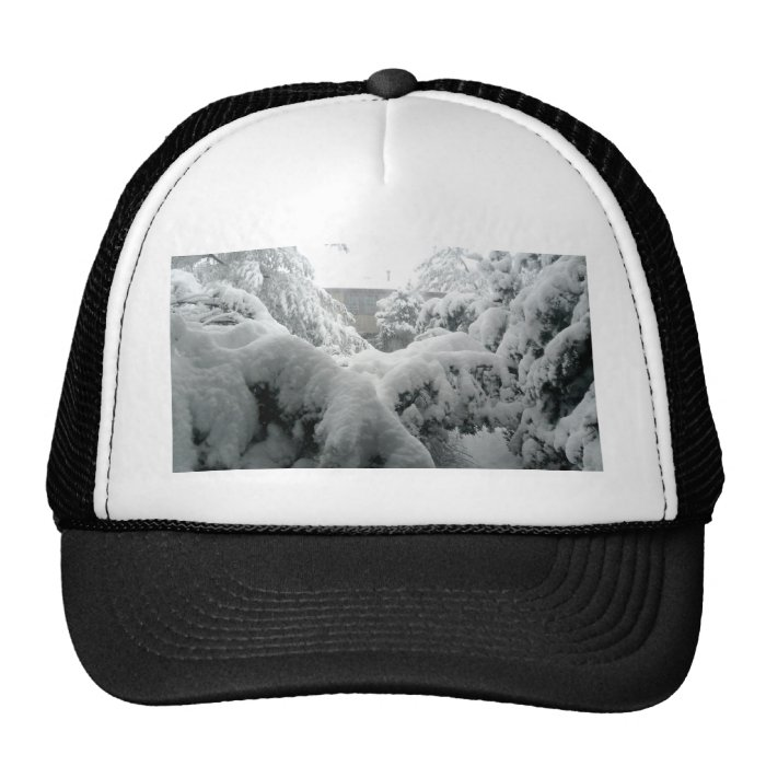 Let there be snow trucker hat