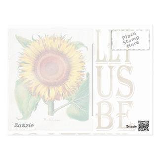 Let Us Be Grateful-Sunflower - Postcard