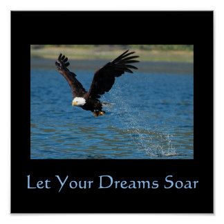 Let Your Dreams Soar Poster