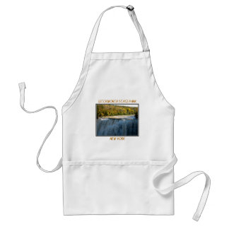Letchworth State Park - Middle Falls Aprons