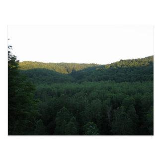 Letchworth State Park Postcard