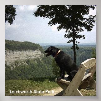 Letchworth State Park Print