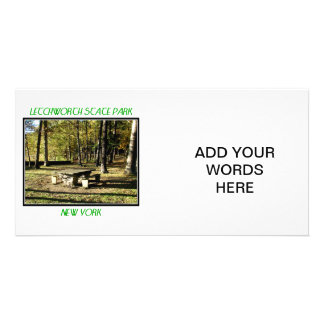 Letchworth State Park - Tea Table Rock Card