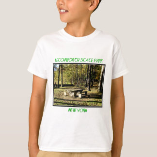 Letchworth State Park - Tea Table Rock T-Shirt