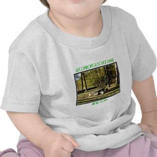 Letchworth State Park - Tea Table Rock Tshirt