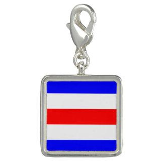 Letra de código náutica de la señal de la bandera dije