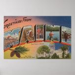 Letra grande de Maine (Capital del Estado/flor) Poster