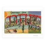 Letra ScenesArizona de ArizonaThe SunLarge Postal