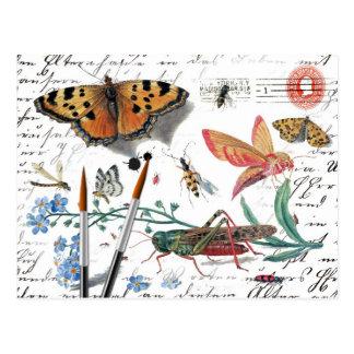 Letra y matasellos del insecto del vintage postales