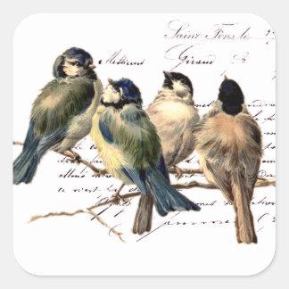 Letra y pájaros franceses del vintage pegatina cuadrada