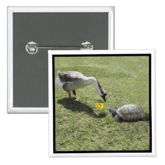 Let's Be Friends - The Turtle & The Goose Button