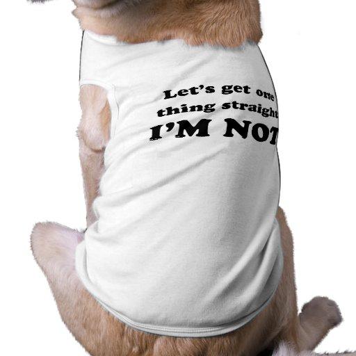 Lets consigue una cosa recta ropa de perro