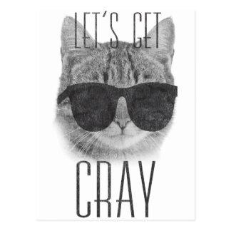 Let's Get Cray Cat Postcard