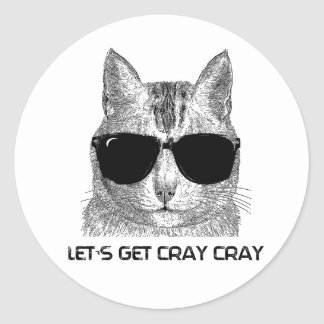 Let's Get Cray Cray Classic Round Sticker