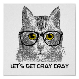 Let's Get Cray Cray Poster