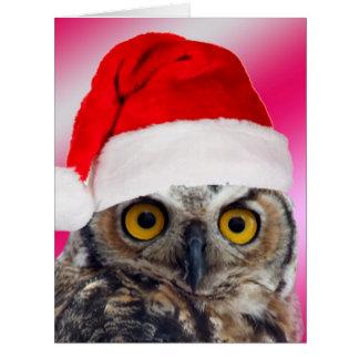 Lets Give Thanks Great Horned Owl Reluctant Santa Card