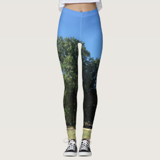 """""""lets go to the park"""" tights"""
