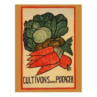 Let's Grow a Vegetable Garden Postcard