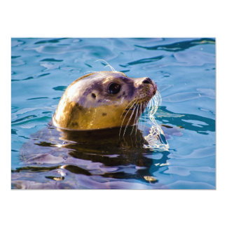 LET'S HAVE SOME SEAL FUN! 6.5X8.75 PAPER INVITATION CARD